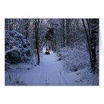 El Snowmobiling después de invierno fresco de las  Tarjeta De Felicitación