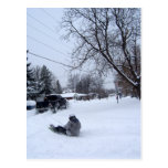 el snowtubing. diversión del invierno tarjetas postales