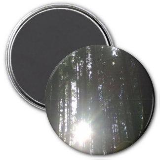 El sol en el bosque imán redondo 7 cm