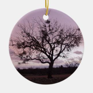 El sol poniente enmarca un árbol en Tejas del Adorno Redondo De Cerámica