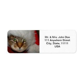 """El """"soldado de caballería papel de lija del gato"""" etiqueta de remitente"""