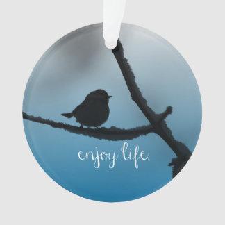 El solo pájaro en rama con disfruta de cita de la
