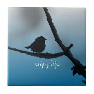 El solo pájaro en rama con disfruta de cita de la teja  ceramica