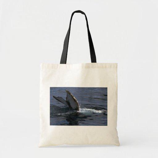 El sonar de la ballena jorobada (platijas de la co bolsa de mano