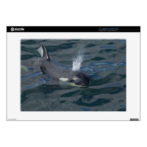 El soplar de la orca 38,1cm portátil calcomanía