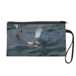 El soplar de la orca