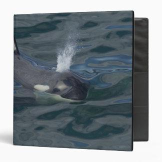 """El soplar de la orca carpeta 1 1/2"""""""