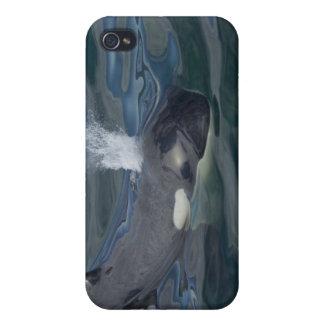 El soplar de la orca iPhone 4 carcasa