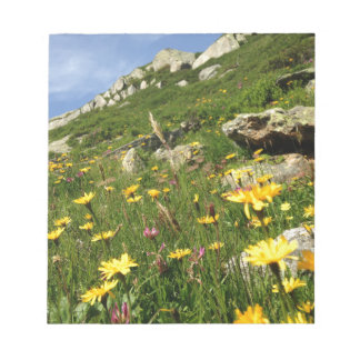 ¡El sorprender! Flores alpinas Bloc De Notas