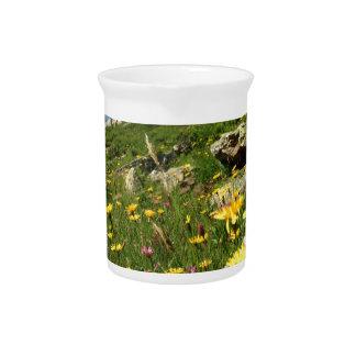 ¡El sorprender! Flores alpinas Jarrón