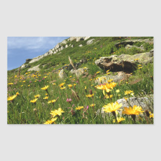 ¡El sorprender! Flores alpinas Pegatina Rectangular