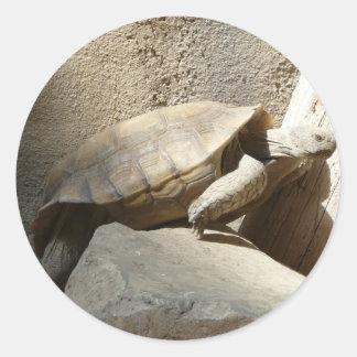 el subir de la tortuga etiquetas redondas
