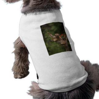 El subir del lince del bebé camisa de mascota