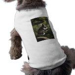 El subir lindo de la koala camiseta de mascota