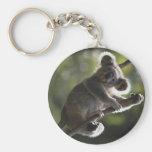 El subir lindo de la koala llavero personalizado