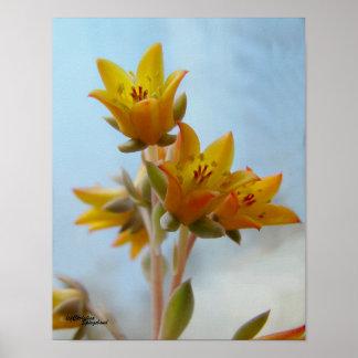 El Succulent del cactus florece el poster