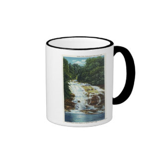 El suero cultiva el parque de estado más bajo cae taza de café