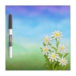 El suizo Edelweiss florece al tablero seco del bor Tableros Blancos