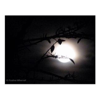 El supermoon elegante de la Luna Llena del © P Postal