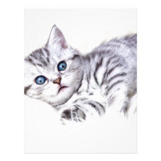 El tabby de plata joven manchó el gato que mentía plantilla de membrete