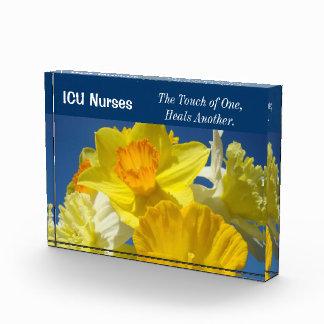 El tacto de la placa del premio de las enfermeras