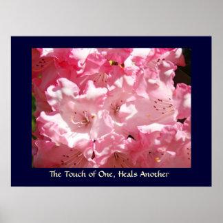 El tacto de uno, cura otro rosa Rhodies de la impr Posters