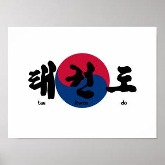 El Taekwondo con la bandera Póster