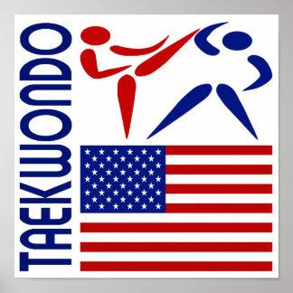 El Taekwondo Estados Unidos Póster