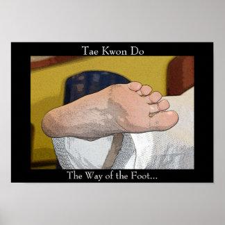 El Taekwondo la manera del pie Póster