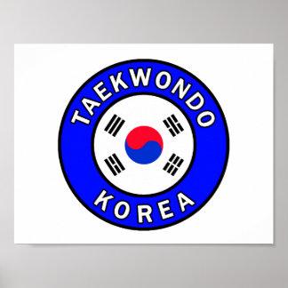 El Taekwondo Póster
