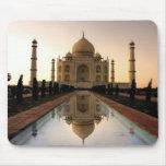 El Taj Mahal de Delhi, la India Alfombrilla De Raton