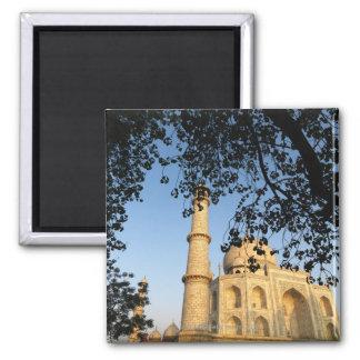 El Taj Mahal en la salida del sol. Agra, la India  Imán Cuadrado