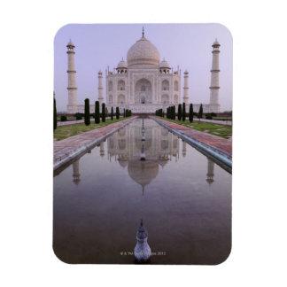 el Taj Mahal reflejó perfectamente en la piscina a Imán