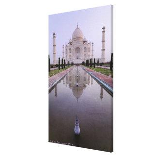 el Taj Mahal reflejó perfectamente en la piscina a Lona Envuelta Para Galerias