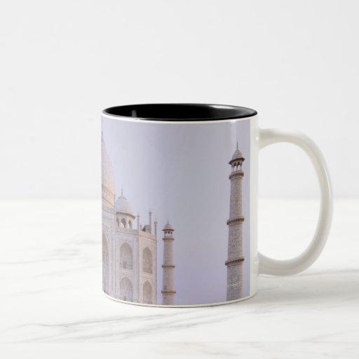 El Taj Mahal todavía reflejado perfectamente en Taza De Dos Tonos