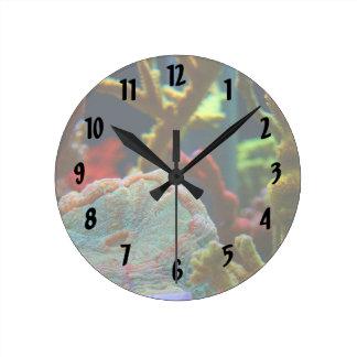 el tanque coralino del acuario de la imagen del ag reloj redondo mediano