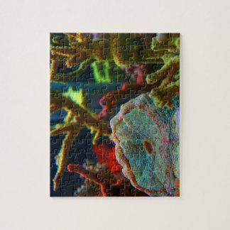 el tanque coralino del acuario de la imagen del ag rompecabezas con fotos