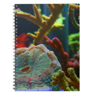 el tanque coralino del acuario de la imagen del ag spiral notebooks