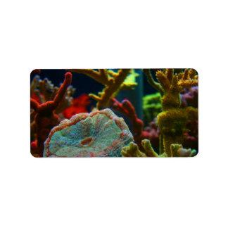 el tanque coralino del acuario de la imagen del etiquetas de dirección