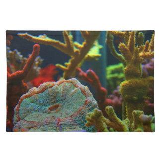 el tanque coralino del acuario de la imagen del manteles