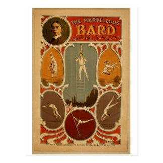 El teatro maravilloso del vintage del bardo tarjeta postal