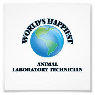 El técnico del laboratorio animal más feliz del fotografías