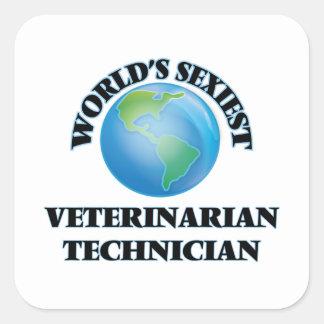 El técnico veterinario más atractivo del mundo pegatinas cuadradas