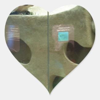 El tejón americano cuida pegatina en forma de corazón