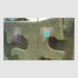 El tejón americano cuida pegatina rectangular