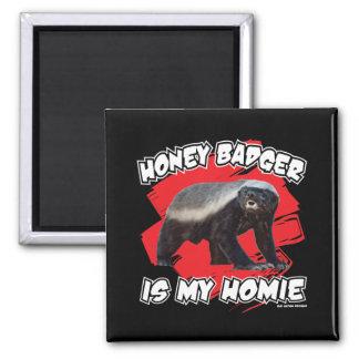 El tejón de miel es mi Homie Iman De Nevera
