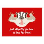 El tejón que acosa ahorra la fecha comunicado