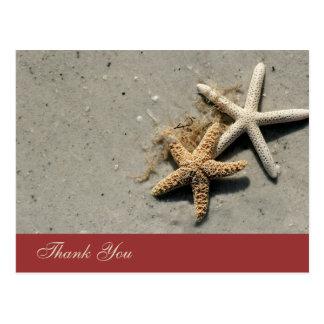 El tema de la playa le agradece las postales
