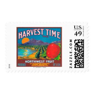 El tiempo de cosecha Apple etiqueta - Yakima, WA Envio