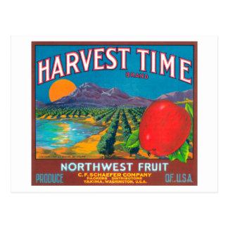 El tiempo de cosecha Apple etiqueta - Yakima, WA Tarjetas Postales